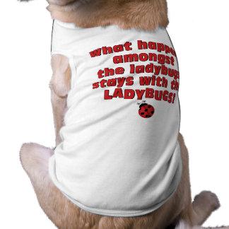 What Happens  . . . Ladybugs Doggie T Shirt