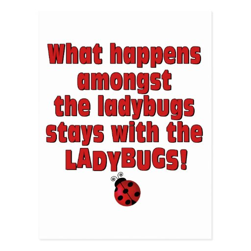 What Happens  . . . Ladybugs Postcard