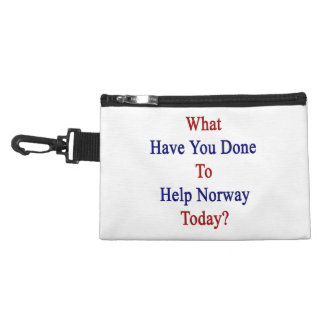 What Have You Done To Help Norway Today? Accessory Bag