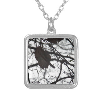 What is already gone silver plated necklace