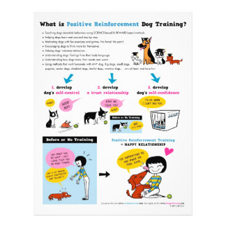 What is Pos Reinf. Dog Training? FLYERS