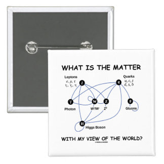What Is The Matter With My View Of The World? Pin