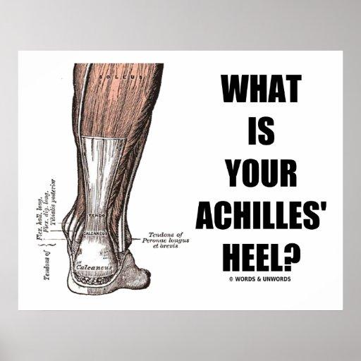 What Is Your Achilles' Heel? (Heel Anatomy) Print