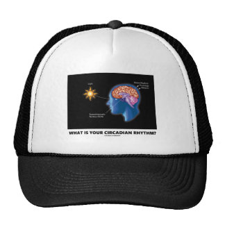 What Is Your Circadian Rhythm? Trucker Hat