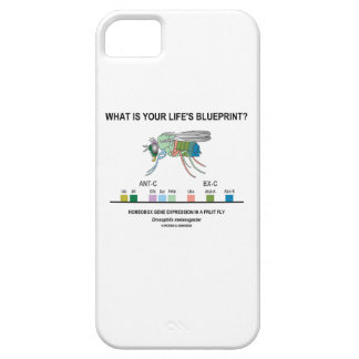 What Is Your Life's Blueprint? (Gene Expression) iPhone 5 Covers