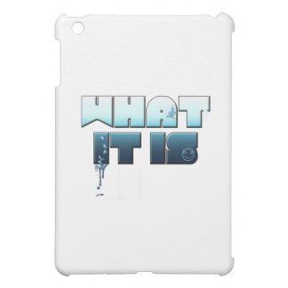 what it is iPad mini cover