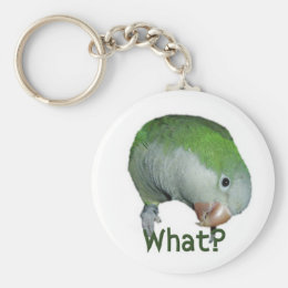 What? Keychain