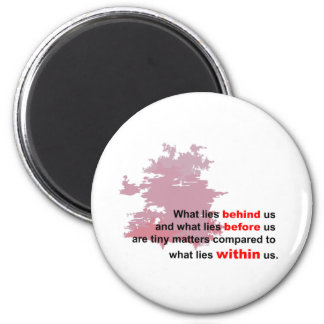 what lies within fridge magnet