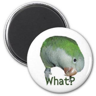 What? 2 Inch Round Magnet
