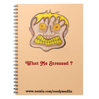 What Me Stressed ?... Notebook