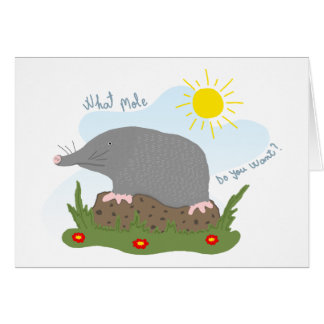 What mole do you want? card