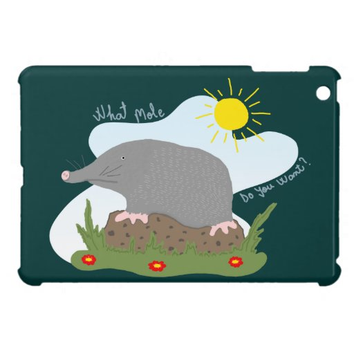 What mole do you want? cover for the iPad mini