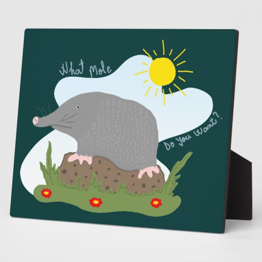 What mole do you want? plaques