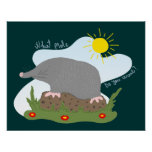 What mole do you want? print