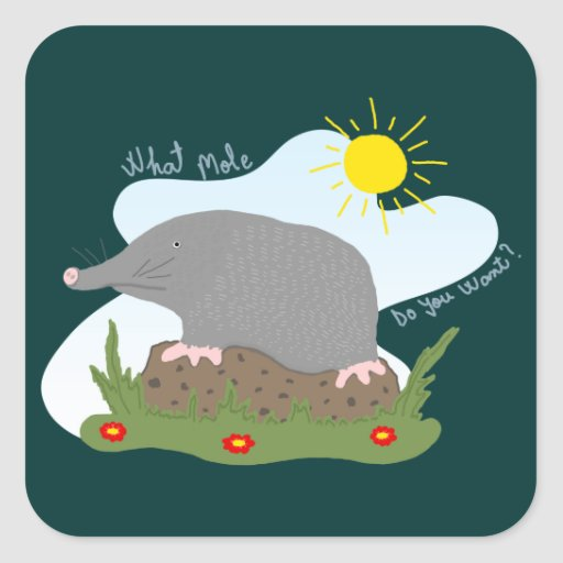 What mole do you want? square sticker