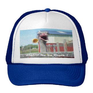 What No Ice Cream - Ostrich Farm Hats