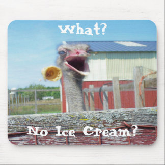 What No Ice Cream - Ostrich Farm Mouse Pad