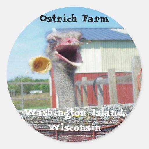 What No Ice Cream - Ostrich Farm Stickers
