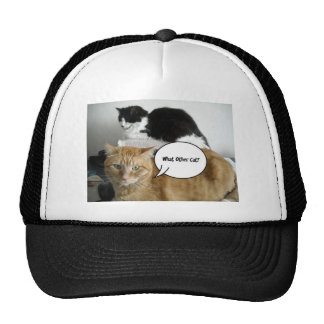 What Other Cat?/Orange Tabby Humor Trucker Hat