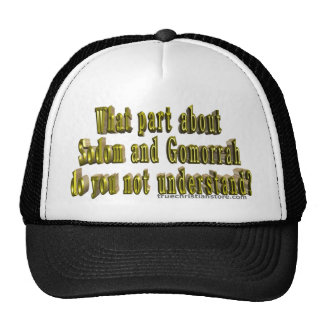 What part about Sodom and Gomorrah? hat