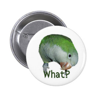 What? Pinback Button