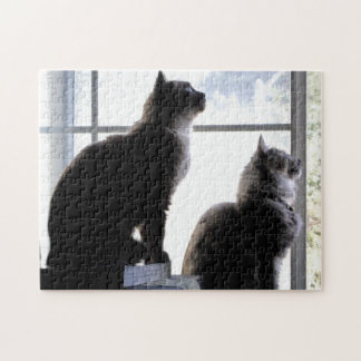 What s Out There Cat Photography Puzzle