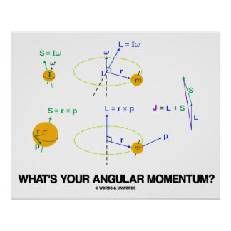 What s Your Angular Momentum Physics Diagrams Poster
