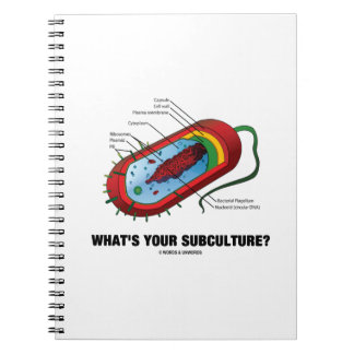 What s Your Subculture Prokaryote Bacterium Journal