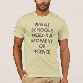 What schools need is a moment of science T Shirt! T-Shirt