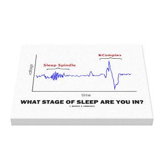 What Stage Of Sleep Are You In? Canvas Print