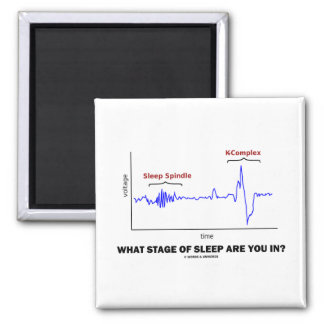 What Stage Of Sleep Are You In? 2 Inch Square Magnet