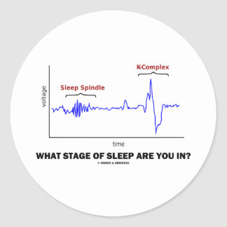 What Stage Of Sleep Are You In? Classic Round Sticker