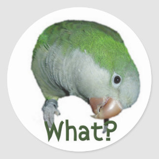 What? Classic Round Sticker