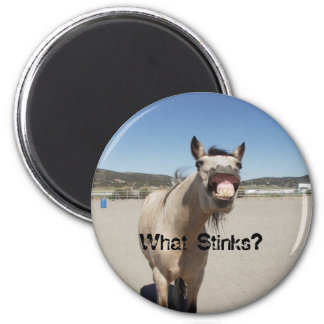What Stinks? 2 Inch Round Magnet