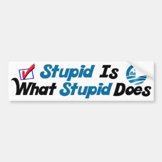 What Stupid Does Car Bumper Sticker