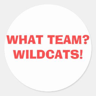 WHAT TEAM? WILDCATS! CLASSIC ROUND STICKER