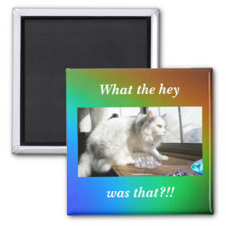 What the Hey was That?!! 2 Inch Square Magnet