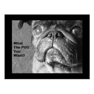 What The Pug Postcard