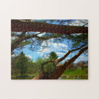 What The Tree Sees Jigsaw Puzzle