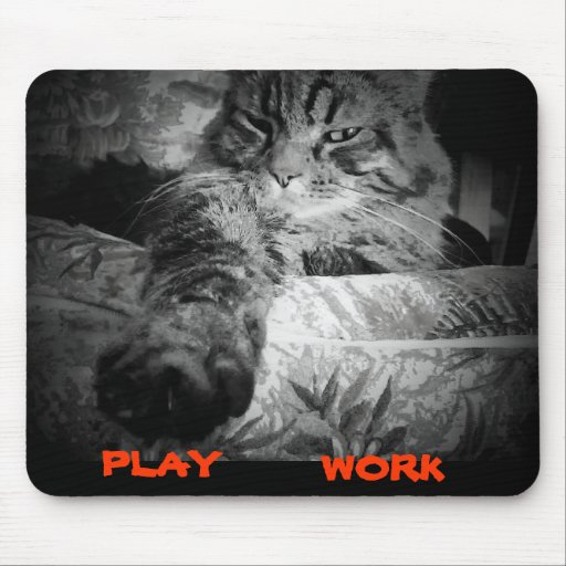 What to do on the internet today. mouse pad