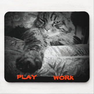 What to do online today. Cat Says Play Mouse Pad