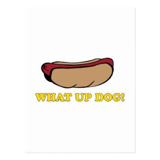What Up Dog? Postcard