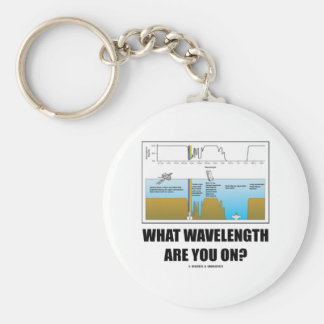 What Wavelength Are You On? (Electromagnetism) Basic Round Button Keychain