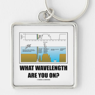 What Wavelength Are You On? (Electromagnetism) Silver-Colored Square Keychain