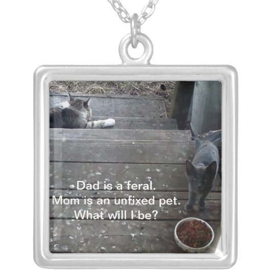 """""""What will I be?"""" Feral Cat Necklace"""