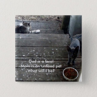 """What will I be?"" feral kitten button"