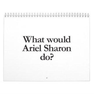 what would ariel sharon do calendars
