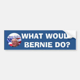 WHAT WOULD BERNIE DO? BUMPER STICKER