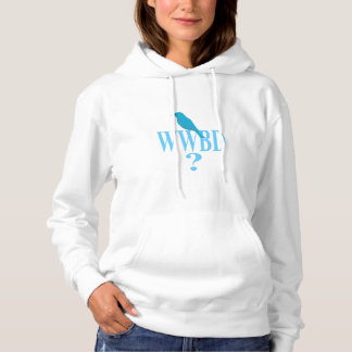 What would Bernie do Hoodie