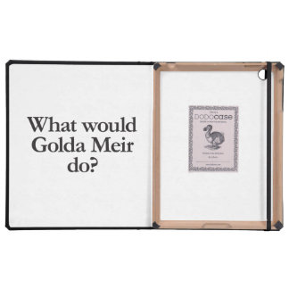 what would golda meir do cover for iPad